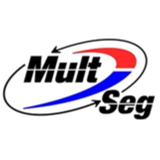 MultSeg